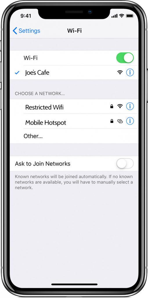Wifi Network List - iPhone